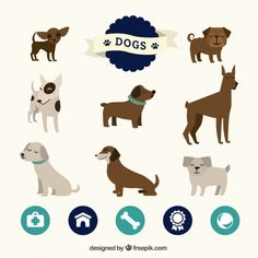 Cute collection of dogs