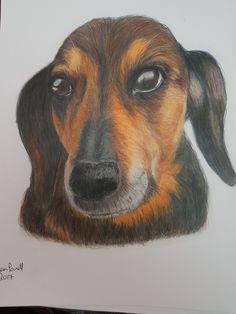 Coloured Pencils, Landscape, Portrait, Artwork, Dogs, Animals, Color, Art Work, Animales