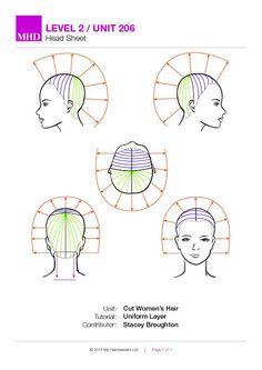 Haircut Diagram : haircut, diagram, State, Board, Haircut, Diagram, Which, Suits