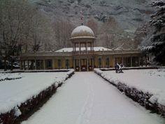 Il viale del Parco con la neve - 2008 #termediboario #parco #snow #wellness