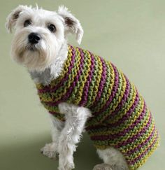 Lion Brand® Wool-Ease® Thick & Quick® City Stripes Dog Sweater