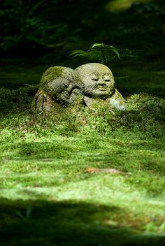 Sanzen-in at Ohara, Kyoto | Flickr - Photo Sharing!