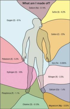 elements that make up humans
