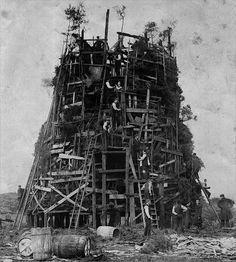 tree-building-royarden.com_