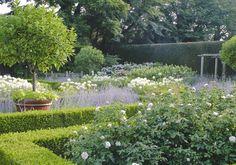ina garten's kitchen garden with standard hydrangea in big pots.