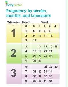 1000 ideas about trimester chart on pinterest pregnancy