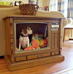 Old TV DIY Pet Bed: The funny thing is that it looks like your pet is on tv! Tv Dog Beds, Pet Beds, Diy Pet, Diy Dog Bed, Old Tv Consoles, Media Consoles, How To Make Bed, Diy Stuffed Animals, Fur Babies
