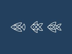 Fish by Nina Megrelidze #Design Popular #Dribbble #shots