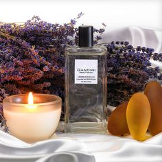 My Gandin Lavander and Golden  Amber  Intense notes brnging to mind beloved memories    The fragrance opens with the green notes of Geranium leaves accompanied by aromatic overtones of Lavender and Coriander. Its floral body hinges around the precious notes of Damascus Rose and Lilly of the Valley. The fragrance closes with an enveloping background of Amber, completed with the sweet touch of Vanilla pods and enriched with the distinctly woody notes of Cedar wood and Patchouli.