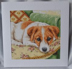 Best seat in the house battersea dogs cats home greeting card by handmade completed cross stitch card extra large jack russell m4hsunfo
