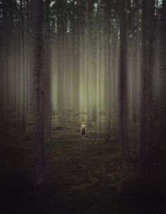 Love this dramatic photo, reminds me of a gothic fairytale like Little Red Riding Hood.