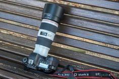 Canon EF 70-200 mm f4L IS II USM análisis: ahora mejor estabilizado con resultados y polivalencia que no decepcionan #camera #Canon #EOS #photography