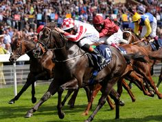 Sole Power, Nunthorpe Stakes.