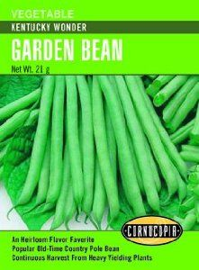 Kentucky Wonder Pole Bean Seeds 65 Seeds by Cornucopia Seeds. $1.79. Popular Old-Fashioned Pole Beans. Broad, Meaty Stringless 9-inch Pods. Eaten Fresh, Preserved or as Dried Shell Beans. One of the most popular old-fashioned pole beans producing broad, meaty, stringless 9-inch pods that can be eaten fresh, preserved or as dried shell beans. Harvest in about 66 days.