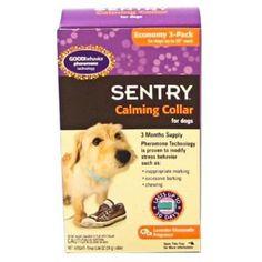 pheromone dog collars | ... Good Behavior Calming Pheromone Dog Collar Anxiety Relief for Dogs....THIS WORKS WONDERS!!!