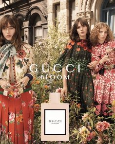 Gucci by Petra Collins. Click link for more