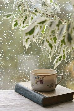A cold winter day, a good book and a nice hot cup of tea - Heaven (photo by Ana Rosa) Book And Coffee, Tea And Books, Coffee Love, Coffee Break, Coffee Cups, Tea Cups, Morning Coffee, Hot Coffee, Coffee Reading