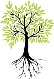 20+ Tree of life clipart with roots ideas in 2021