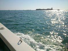 Castillo de Sancti Petri (Chiclana de la Frontera, Cádiz) - El placer de pasar una tarde observando de fondo los colores que marca el castillo de Sancti Petri, en la playa de la barrosa ( Chiclana De La Frontera )