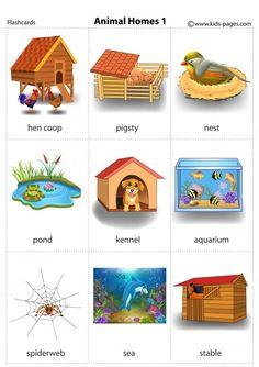 Animal Homes 1 flashcard Animal Activities For Kids, Preschool Learning Activities, Preschool Worksheets, Preschool Activities, Animals For Kids, Learning English For Kids, English Worksheets For Kids, English Lessons For Kids, Kids English