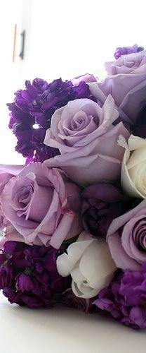 My Favourite colour ... Purple ... this would be the ultimate arrangement to get :)