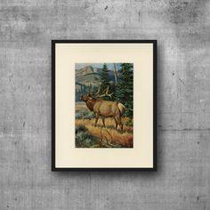 Vintage Elk Art Print - C. 1950 Vintage Magazine Print - Wall Art, Home Decor…