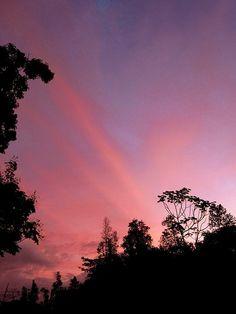 Early morning sunrise in Hawaiian Paradise Park, Puna District, Big Island, Hawaii.
