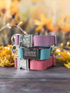 Available in 15 colors Cool Dog Collars, Leather Cat Collars, Dog Accesories, Pet Accessories, Daisy, Dog Collar With Name, Custom Dog Tags, Personalized Dog Collars, Cute Dogs