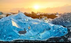 iceberg in the black sand beach of Jokulsarlon in Iceland