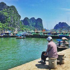 Estamos de olho  Just checking out  #halong #quangninh