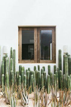 Amazing outdoor space with cactus. Exterior Design, Interior And Exterior, Outdoor Spaces, Outdoor Living, Landscape Design, Garden Design, Desert Homes, New Wall, Home Design