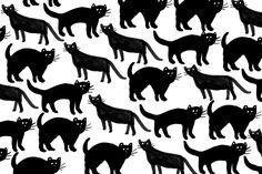 cats-desktop2