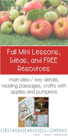 This blog post is full of great ideas to celebrate fall in the primary classroom. Your Kindergarten, 1st, and 2nd grade classroom or home school students will enjoy the FREE main idea download, apple craft activity, apple anchor chart, fall themed hallway display, book ideas, apple tasting ideas, pumpkin book recommendations, gallery walk, FREE pumpkin reading passages, and more! {K, first, second graders, autumn}