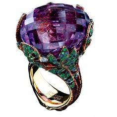 The Luxurious Jewelry ..