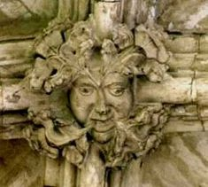 A good search of many churches and cathedrals will often lead you to discover, somewhere, a carving of a human head within a mass of leaves.