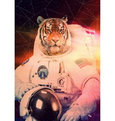 Space Tiger poster – Buy Me Brunch