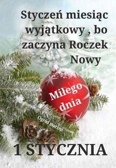 Happy New Year, Christmas Bulbs, Holiday Decor, Christmas Light Bulbs, Happy New Year Wishes