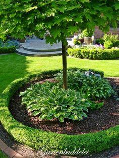 Gartenbuddelei – Garten Design – The World Landscaping Around Trees, Landscaping Plants, Front Yard Landscaping, Landscaping Ideas, Inexpensive Landscaping, Landscaping Software, Patio Plants, Garden Planters, Garden Borders