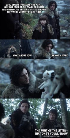 Game Of Thrones Facts, Game Of Thrones Quotes, Game Of Thrones Funny, Game Of Thrones Wolves, Game Thrones, Bran Stark, Stark Children, Game Of Thones, Harry Potter