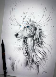 Souls of Nature series pencil drawings