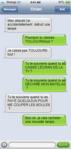 Si votre chien pouvait écrire des textos, il vous enverrait sûrement des messages comme ceux-là... C'est excellent ! Rage, Old Memes, Lol, Messages, Happy Fun, Funny Stories, Funny Moments, Funny Cute, Funny Images