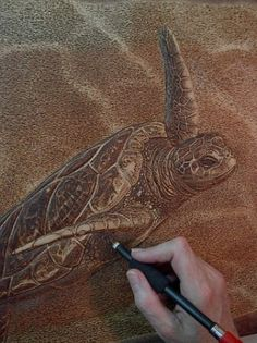 Sue Walters Pyrography - Wood Burning Pictures