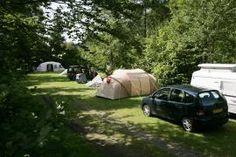 Duitsland, in buurt van Freiburg, Leuk is het natuurzwembad vlakbij. Camping aan riviertje.  Terrassen-Camping Alte Sägemühle, Sulzburg Südl Schwarzwald