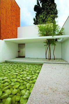 Zen composition Urban garden in Sao Paulo, Brazil by Isabel Duprat