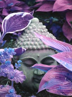 Adding garden statues is a beautiful way to enhance your garden. If you want to create a Zen garden, the Buddha garden statues can complete the look of your garden. Buddha Zen, Buddha Buddhism, Buddha Garden, Gautama Buddha, Buddha Peace, Lavender Leaves, Little Buddha, All Things Purple, Shades Of Purple