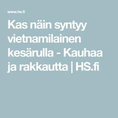 Kas näin syntyy vietnamilainen kesärulla - Kauhaa ja rakkautta | HS.fi Gluten Free, Glutenfree, Recipes, Sin Gluten, Grain Free