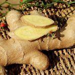Alternative Medicine, Flora, Stuffed Mushrooms, Herbs, Vegetables, Health, Plant, Salud, Health Care