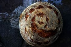 Tartine Bread Experiment: Flashback Friday: Tartine Country Bread
