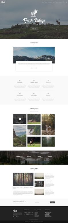 Brush – is clean, beautiful, minimalist PSD Template which can be used for Photographer Portfolio, Personal Website, Product Website, and much more. #photography #website