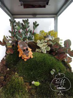 Totoro terrarium!